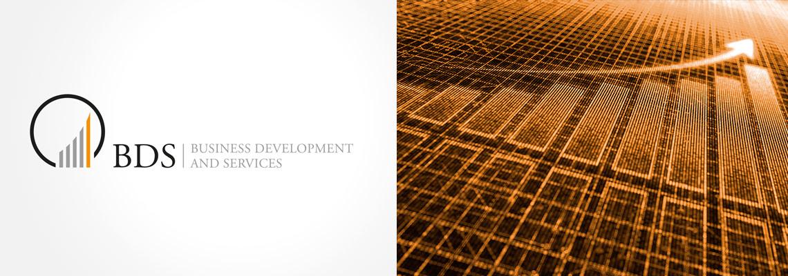 BDS-Business Development Logogestaltung